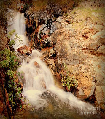 Photograph - Lake Shasta Waterfall 2 by Garnett  Jaeger