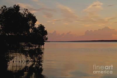 Photograph - Lake Sunrise by William Norton