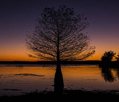 Photograph - Lake Sunset by Amber Kresge