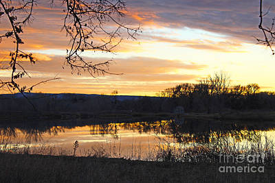 Photograph - Lake Sunset With Russian Olive Branches  by Dale Jackson