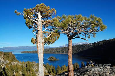 Photograph - Lake Tahoe Fannette Island Framed by Debra Thompson