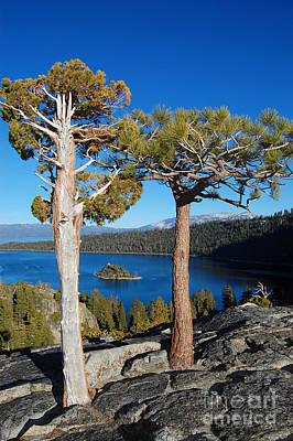 Photograph - Lake Tahoe Framed Island by Debra Thompson