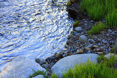 Lake Tahoe River's Edge Art Print by Anne Barkley
