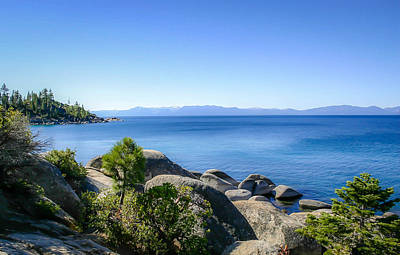 Photograph - Lake Tahoe Shore by Shey Stitt