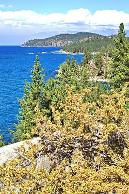 Photograph - Lake Tahoe Shoreline by Gordon Elwell