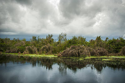 Photograph - Lake Trafford Storm by Carolyn Marshall