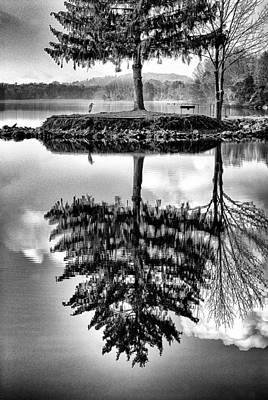 Photograph - Lake Tree by Paul W Faust -  Impressions of Light