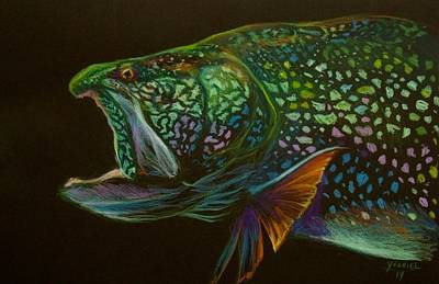 Lake Drawing - Lake Trout Portrait by Yusniel Santos