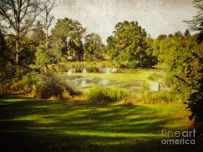 Photograph - Lake View by Colleen Kammerer