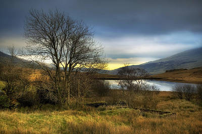 Photograph - Lake View by Ian Mitchell