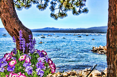 Photograph - Lake View On Lake Tahoe By Diana Sainz by Diana Raquel Sainz