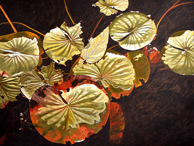 Lake Washington Lily Pad 11 Art Print