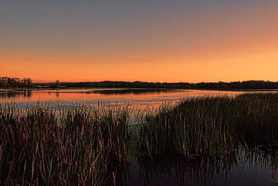 Photograph - Lake Wausau Marshgrass by Dale Kauzlaric