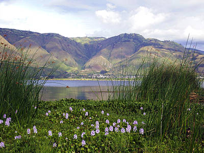 Photograph - Lake Yanacocha Ecuador by Kurt Van Wagner