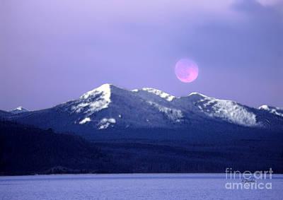 Yellowstone Digital Art - Lake Yellowstone by Linda  Parker