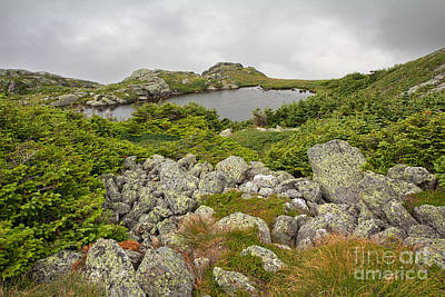Photograph - Lakes Of The Clouds 1 by Jemmy Archer