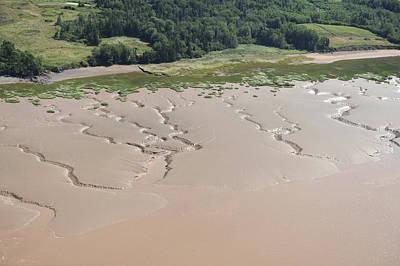 Lakeshore Landscape Created By Tides Art Print by Bernard Dupuis