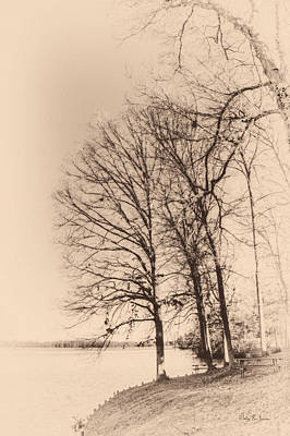 Photograph - Lakeshore Park by Barry Jones