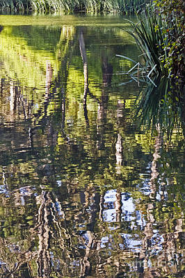 Art Print featuring the photograph Lakeshore Reflections by Kate Brown