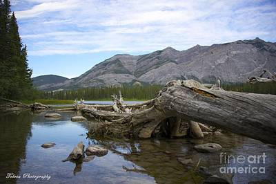 Wall Art - Photograph - Lakeside By The Mountain by Christine Mlynarchuk