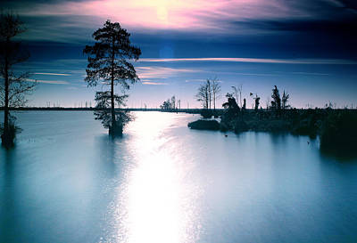Photograph - Lakeside by Pete Federico