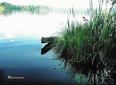 Photograph - Lakeside Reeds by Sadie Reneau