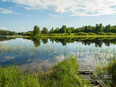 Photograph - Lakeside Reflections by Ismo Raisanen