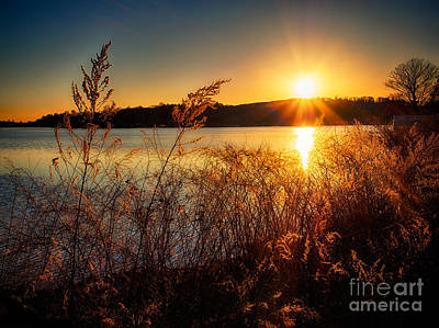 Photograph - Lakeside Sunset by Mark Miller