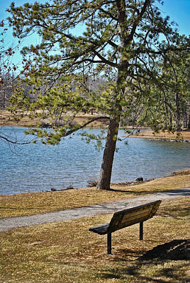 Photograph - Lakeside Walking Trail Bench by Greg Jackson