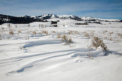 Photograph - Lamar Valley Winter Scenic by Jack Bell