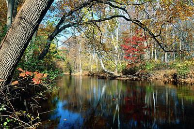Fallen Leaf Photograph - Lamington River At Tewksbury  by George Oze
