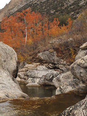 Lamoille Canyon Colors Art Print