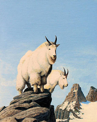 Painting - Lamoille Goats by Darcy Tate