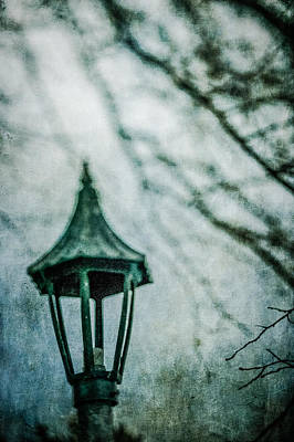 Photograph - Lamp In Winter by YoPedro