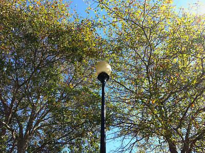 Lamp Post And Fall Foliage Art Print by Karen Rhodes