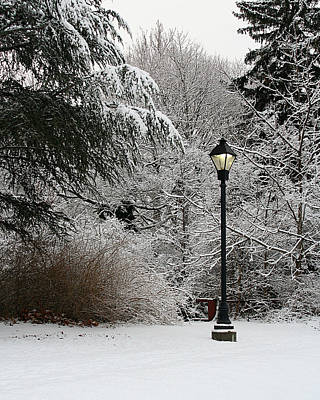 Stratford Photograph - Lamp Post In Winter by William Selander