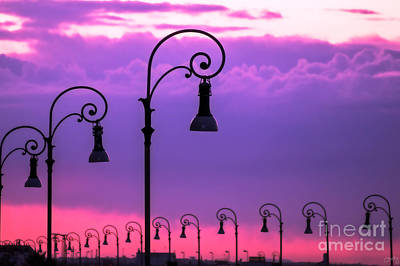 Photograph - Lampposts In Purple by Prints of Italy