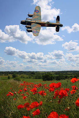 Photograph - Lancaster Bomber And Poppy Field by Ken Brannen