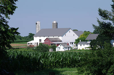 Photograph - Lancaster Farm by Greg Graham