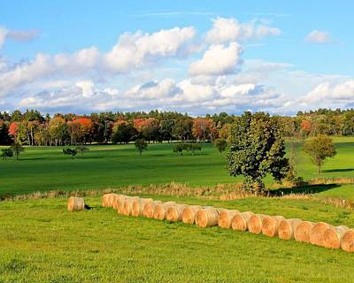 Photograph - Lancaster Ma Farmland In Autumn 2 by Michael Saunders