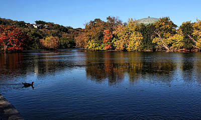 Photograph - Landa Park by Judy Vincent