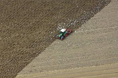 Flevoland Photograph - Landbouw, Dronten by Bram van de Biezen