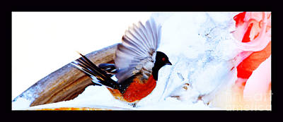 Spot Of Tea Royalty Free Images - Landing at Snowy Skull Bird Cafe Royalty-Free Image by Susanne Still