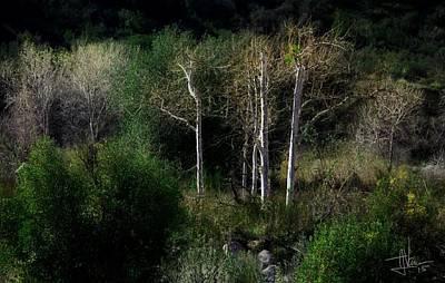Photograph - Landscape 06feb2015 by Jim Vance