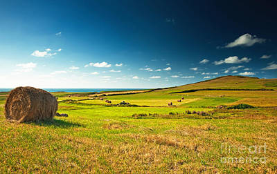 Art Print featuring the photograph Landscape At Summer by Boon Mee