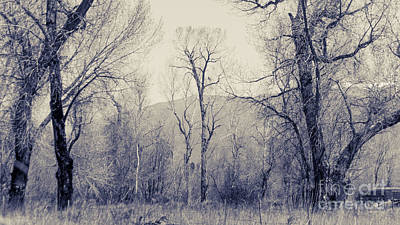 Earthship Photograph - Landscape E10w Taos Nm by Otri Park