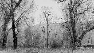Earthship Photograph - Landscape E10x Taos Nm by Otri Park