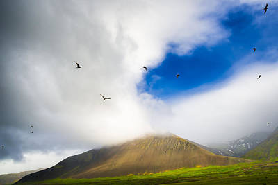 Photograph - Landscape In Iceland With Birds In The Sky by Matthias Hauser