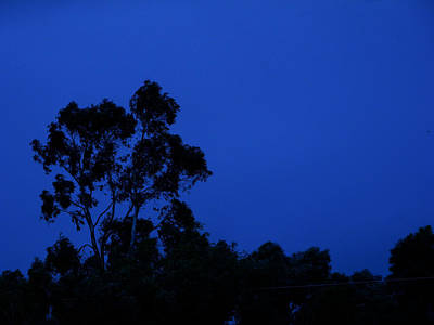 Photograph - Blue Landscape by Mark Blauhoefer
