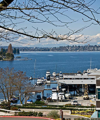 Photograph - Landscape Of Lake Washington From Kirkland Perspective by Valerie Garner